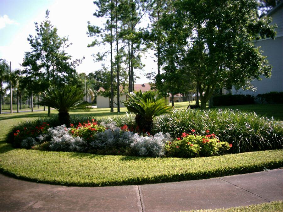 Landscaping design florida landscaping today for Garden design in florida