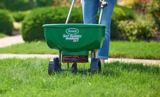 Fertilizing St. Augustine Grass Tips