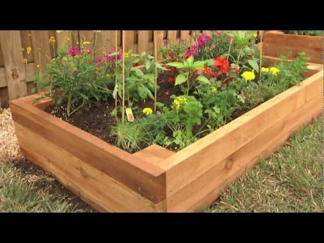 How To Build A Raised Garden Bed Florida Landscaping Today