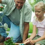 Florida Gardening Radio
